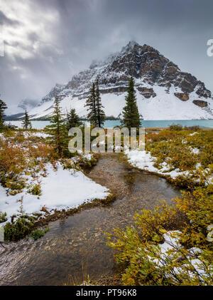 Le Lac Bow est un petit lac à l'ouest de l'Alberta, Canada. Il est situé sur la rivière Bow, dans les Rocheuses canadiennes, à une altitude de 1920 m. Le lac se trouve Banque D'Images