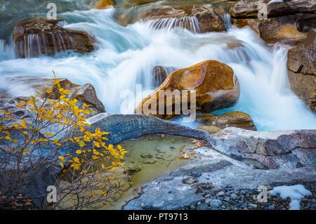 Nigel Creek est un fleuve situé dans les Rocheuses canadiennes de l'Alberta, Canada. Banque D'Images