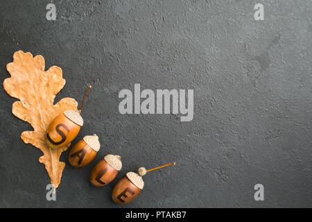 Vente d'automne décoration avec des glands et une feuille de chêne sec sur fond noir avec copie espace, mise à plat, vue du dessus