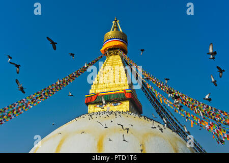 Stupa Boudhanath avec un troupeau de pigeons volant dans le ciel, Katmandou, Népal Banque D'Images