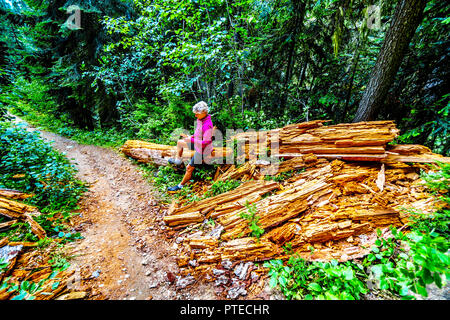 Hauts Femme assise sur un tronc d'arbre décomposé sur un sentier de randonnée aux chutes lac près de la Coquihalla Sommet en Colombie-Britannique, Canada Banque D'Images