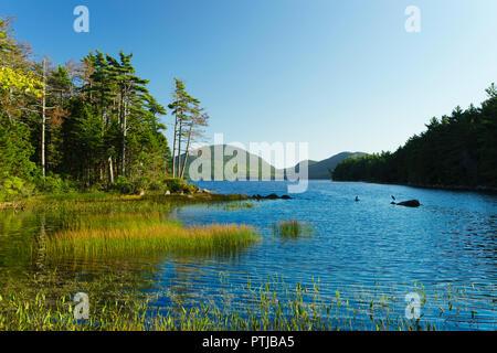 La fin de l'après-midi sur le lac Eagle dans l'Acadia National Park, Maine, USA. Deux hérons peut être vu sur les rochers. Banque D'Images