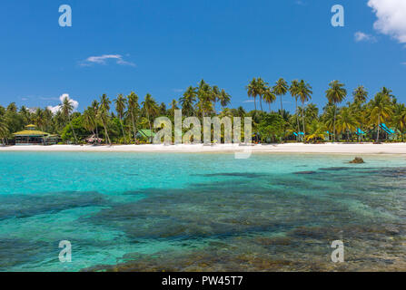 Palmiers sur la plage tropicale de Koh Kood island en Thailande