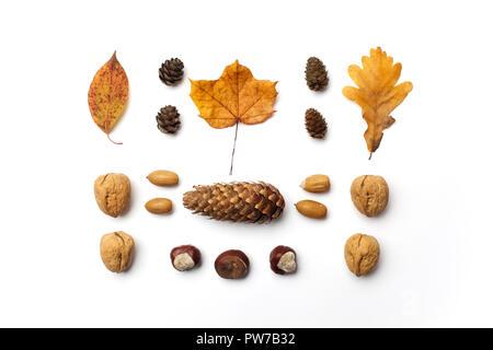 Composition d'automne. Motif de feuilles d'automne, pommes de pin sur fond blanc. Mise à plat. Banque D'Images