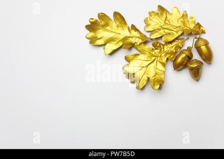 Golden Oak Leaf et acorn sur fond gris clair