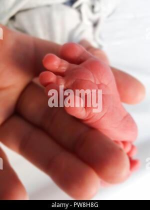 Mère tenant peu pied de deux jours d'âge nouveau-né,
