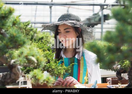 Jolie femme jardinier prendre soin de ses plantes en fleurs et plantes - boutique femme asiatique travaillant dans une serre Banque D'Images