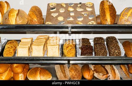 Arrière-plan avec divers types de pain frais avec du blé, des graines de pavot, céréales, Banque D'Images