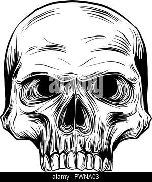 Vector illustration noir et blanc de crâne humain avec une mâchoire inférieure à l'encre à la main style. Banque D'Images