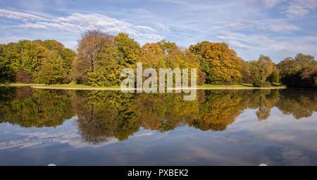 City Park, automne, Munich, Allemagne. Pelouse, arbres et reflets dans un étang