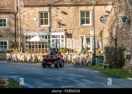Un agriculteur sur un quad bike escorte un troupeau de moutons dans le village rural de Thwaite, Swaledale, vallées du Yorkshire, UK Banque D'Images