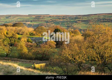 Voir plus haut avec Wharfedale pittoresque cottage & autumn trees éclairées par la lumière du soleil du matin - de Burley Woodhead, West Yorkshire, Angleterre, Royaume-Uni. Banque D'Images