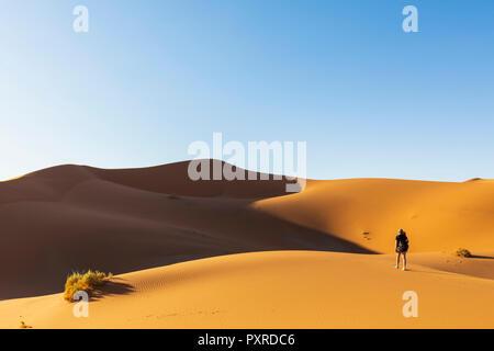 L'Afrique, la Namibie, désert du Namib Naukluft, Parc National, tourisme femme marche sur dune