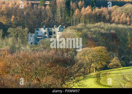 Voir l'automne de Barden Tower, historique des ruines anciennes par des forêts denses avec des arbres à feuillage coloré - Bolton Abbey Estate, Yorkshire, England, UK
