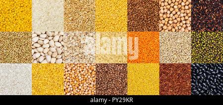 Schéma des différentes céréales, les céréales, le riz et les haricots d'artifices Banque D'Images