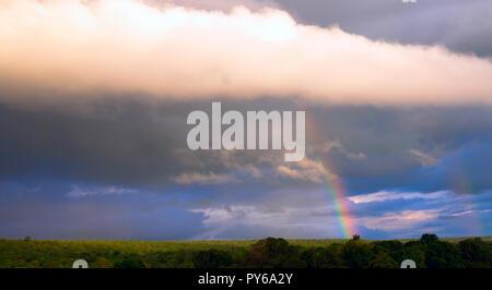 Arc-en-ciel sur la forêt tropicale d'une partie de la Bolivie. Nuages spectaculaires de la tempête sortant