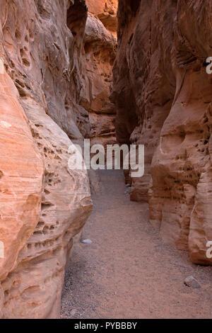 NV00041-00...NEVADA - Un slot canyon situé sur le sentier en boucle de dômes blancs dans la Vallée de Feu State Park. Banque D'Images