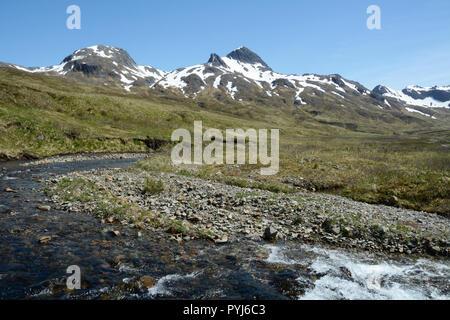 Une rivière qui traverse un grassy mountain meadow sur l'île d'Unalaska, archipel des Aléoutiennes, Alaska, United States. Banque D'Images