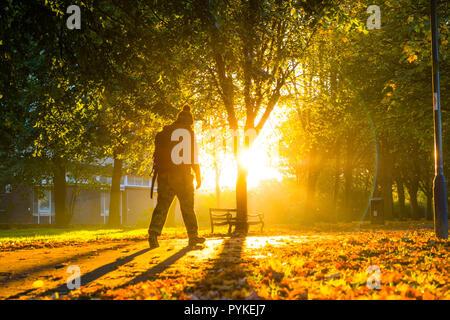 Pays de Galles Aberystwyth UK, 29/10/2018 Météo France: un homme qui marche le long de la Plas bordée d'Crug park à l'aube par un froid matin d'automne et frosty à Aberystwyth au Pays de Galles, avec la lumière du soleil étincelant à travers les feuilles des arbres colorés. Crédit photo: Keith morris/Alamy Live News Banque D'Images