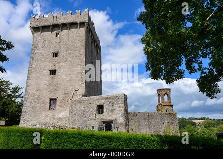 Le château de Blarney et Jardins, près de Cork, dans le comté de Cork, en République d'Irlande Banque D'Images