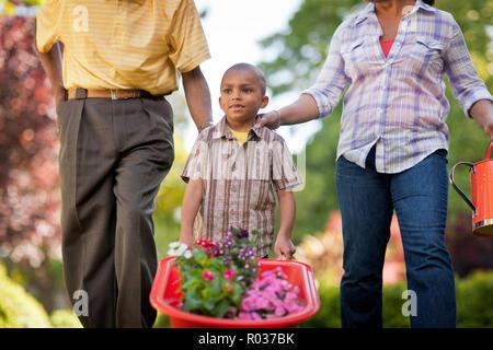 Jeune garçon en poussant une brouette pleine de plantes à fleurs tandis que dans la cour arrière avec son père et sa mère. Banque D'Images