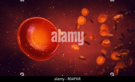 Les globules rouges transportent l'oxygène vers tous les tissus de l'organisme, érythrocytes, 3d illustration Banque D'Images