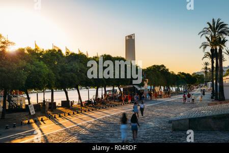 Avenida Alcalde Marques del Contadero le long du Canal de Alfonso XIII au coucher du soleil, Séville, Andalousie, Espagne, Europe Banque D'Images