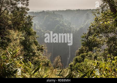 Cascade de Tad Fane, Plateau des Bolavens, Pakse, Laos.