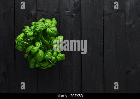 Vue de dessus le basilic plante dans un pot sur la table en bois noir avec copie espace. Feuilles de basilic frais. Banque D'Images