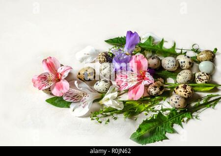 Oeufs de cailles avec les feuilles de pissenlit, fleurs de rose et de blanc et les branches de l'Alstroemeria Iris mauve contre-plaqué blanc