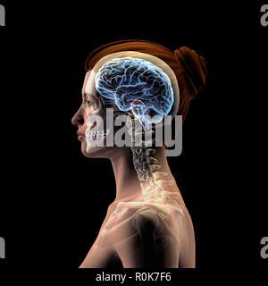 Profil de la tête de la femme avec le crâne et le cerveau sur un fond noir. Banque D'Images