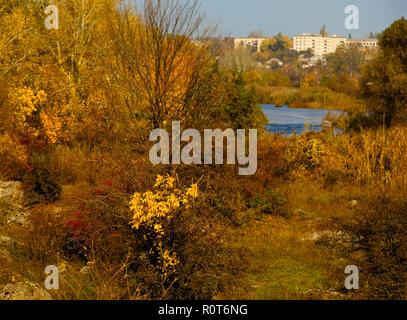 Panorama de la stony river bank automne doré Banque D'Images