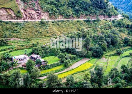Dans Jaunsar-Bawar Chakrata, paysage, l'Uttrakhand, Inde Banque D'Images