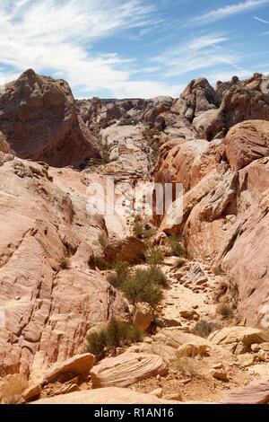 Dômes blancs sentier dans la vallée de feu est un sentier désert robuste