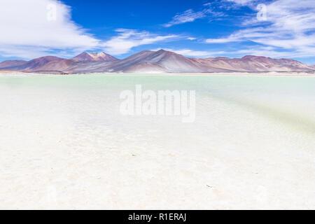 """L'extraordinaire 'Salar de Piedras Rojas"""" (pierres rouges Saltlake) à l'intérieur de désert d'Atacama au Chili dans les Andes, un étonnant paysage coloré et au Chili"""