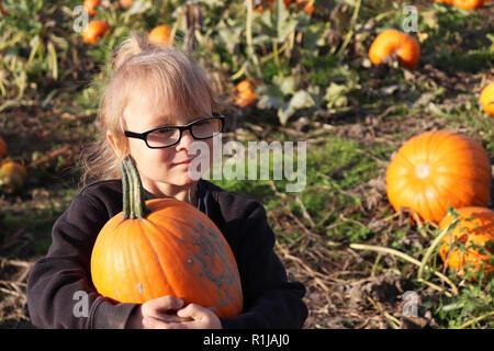 Little girl picking une citrouille dans un champ de citrouilles Banque D'Images