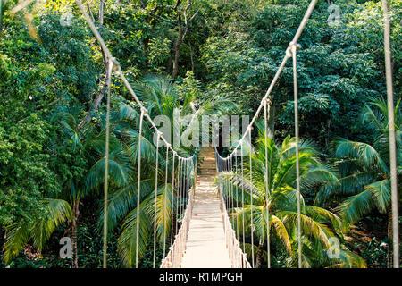 Pont de corde suspendu dans la jungle du Honduras rainforest sur fond vert naturel. La faune et la nature. Voyages et aventures concept Banque D'Images