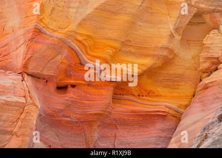 Les grès altérés dans un slot canyon le long de la piste de coupoles blanches, Vallée de Feu Park, Nevada, USA Banque D'Images