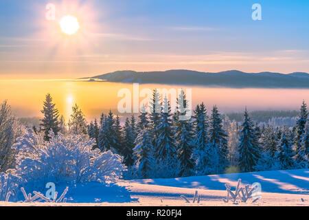 L'effet de halo solaire dans le brouillard. Très froid en Janvier 24, en Finlande. Sotkamo Banque D'Images