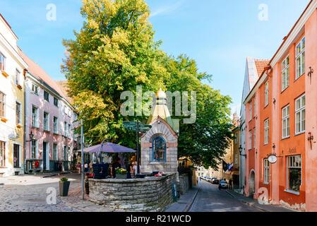 Marché vert, dans le 19ème siècle ce domaine de Roheline Turg (Marché vert) a été utilisé comme le poisson, les marchés de légumes et de fleurs. Tallinn, Tartu County, Est Banque D'Images