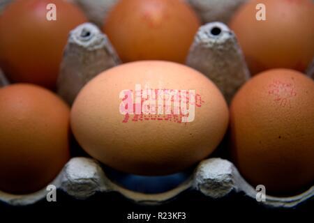 Egg estampillés de la marque Lion garantissant la qualité Banque D'Images