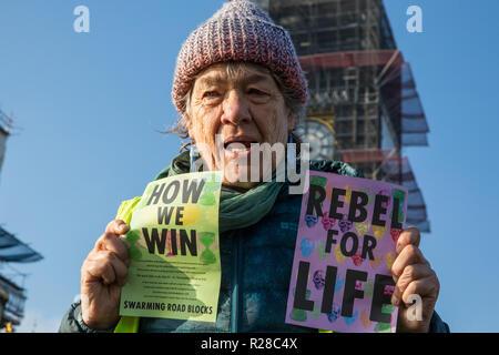"""Londres, Royaume-Uni. 17 novembre, 2018. Un militant de l'environnement de l'extinction, la rébellion se tient devant les Chambres du Parlement de Westminster Bridge, l'un des cinq ponts bloqués dans le centre de Londres, dans le cadre d'un événement pour souligner la Journée de la rébellion criminelle """"l'inaction face au changement climatique et catastrophe catastrophe écologique"""" par le gouvernement britannique dans le cadre d'un programme de désobéissance civile au cours de laquelle des dizaines de militants ont été arrêtés. Credit: Mark Kerrison/Alamy Live News"""