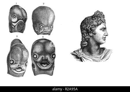 Vintage illustration, fœtus humain de développement face à la semaine 3d mois 3d, comparaison avec le profil classique dieu Apollo Banque D'Images