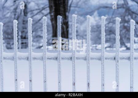Dans la neige gelée clôture treillis close-up. Banque D'Images