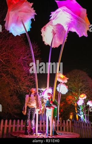 Kew Gardens, Londres, 21 Nov 2018. Deux enfants s'amuser dans le cadre enchanteur du domaine de fleurs lumineuses. Retourner aux Jardins botaniques royaux de Kew est 'Noël à Kew, un parcours dans l'après-Kew paysage sombre, éclairée de plus d'un million de lumières scintillantes, et disposant d'installations sonores et de lumière spectaculaires le long de la route, y compris les tunnels de lumière et, à la fin, le spectaculaire Palm House Grand Finale avec show laser. (Tous les modèles de l'enfant ont été fournies par le lieu et le consentement a été obtenu) Credit: Imageplotter News et Sports/Alamy Live News Banque D'Images