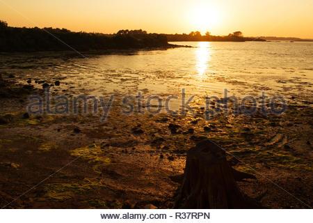 Golfe du Morbihan, Bretagne France Europe, Coucher de soleil sur l'océan, coucher du soleil sur mer nature paysage magnifique, les lumières du soleil incroyable lumière golden sun Banque D'Images