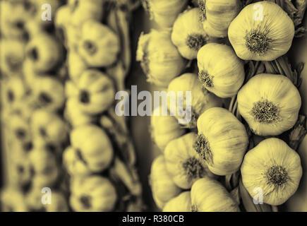Récolte de l'ail dans un marché, ingrédient détail Banque D'Images