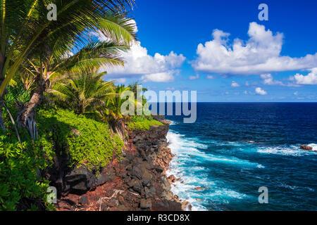 Surf et de palmiers le long de la côte de la Puna, le Big Island, Hawaii, USA Banque D'Images