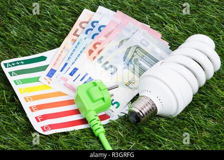 Ampoule à économie d'énergie et d'argent on meadow Banque D'Images
