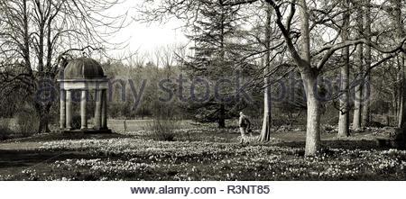 Un jardin de printemps Lieux à Doddington Hall, Lincolnshire, Royaume-Uni. Banque D'Images